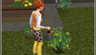 Мод для Симс 4: независимое садоводство