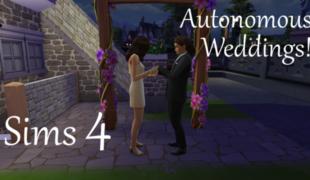 Мод для Симс 4: автономные бракосочетания