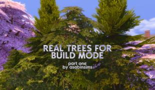 Мод для Симс 4: реальные деревья для строительства